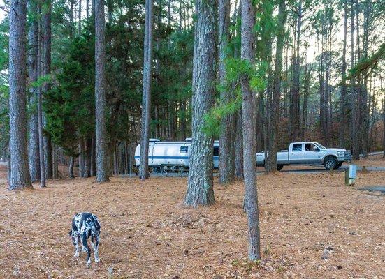 Lake Claiborne State Park Reviews on louisiana grand isle state park map, louisiana state map cities, louisiana chicot state park map, louisiana purchase state park arkansas,