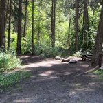 Cottonwood campground wa