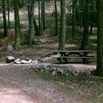 North fork nine mile campground