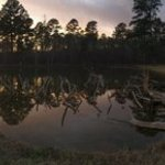 Davis lake campground tombigbee nf