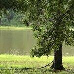 Marathon lake