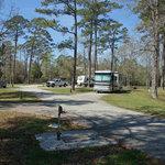 Cedar point campground croatan nf