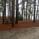 John h moss lake city campground