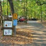 Mcdowell nature preserve