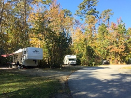 Flanners Beach Neuse River Campground