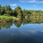 Pettigrew state park