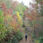 Ralph andrews county park