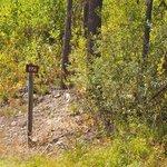 Dorris creek road