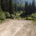 Lost johnny creek road