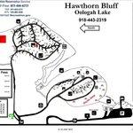 Hawthorn bluff