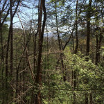Chilhowee recreation area