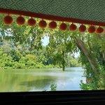 Harpeth river bridge campground